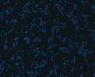 Античный синий / C13