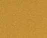 Золотой металлик / C17